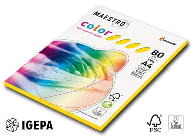 Maestro Color